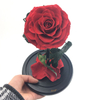 Preserved Rose in M Size Glass